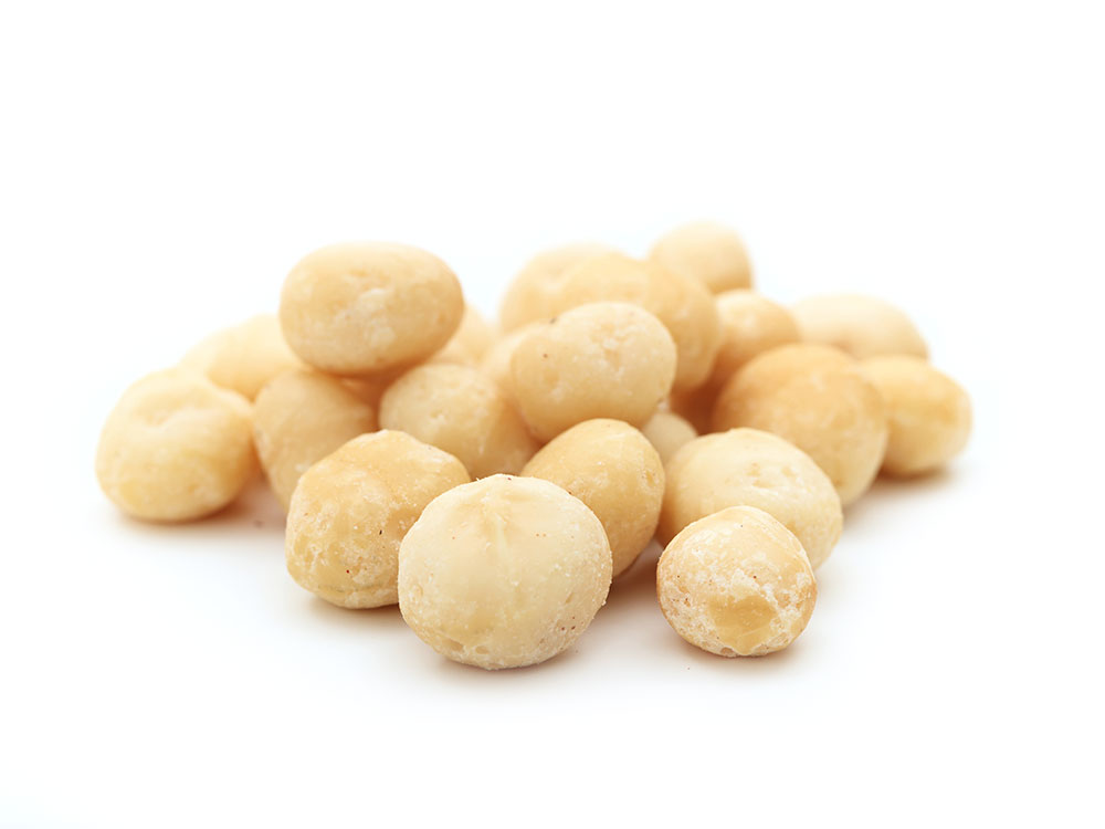 Macadamia close up